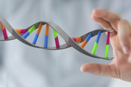 Ученые создали универсальный наношприц для ввода ДНК в живые клетки