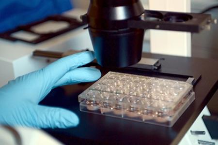 Революционный препарат против рака создали в России