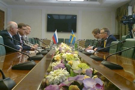 Шведский визит в Совет Федерации