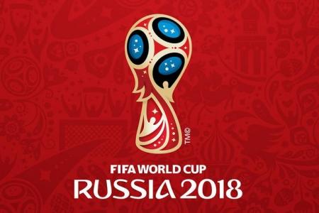 Сенаторы проинспектировали ход подготовки к проведению в Сочи игр ЧМ-2018 по футболу