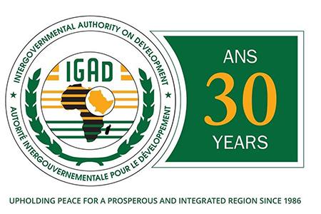 «ИГАД – роль региональных организаций в урегулировании вооруженных конфликтов»