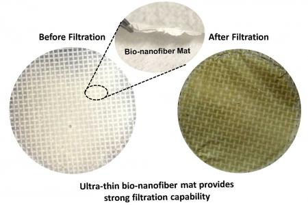 Соевый белок превратили в универсальный воздушный фильтр