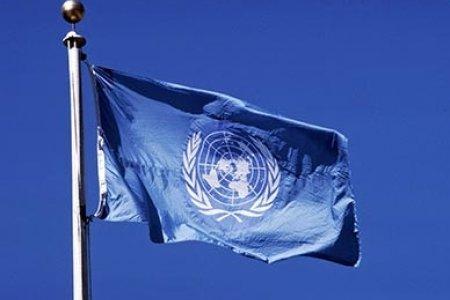 Международная модель ООН «DAIMMUN-2017»