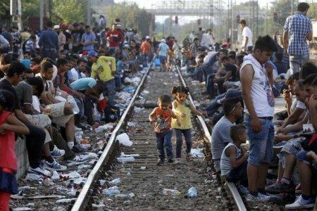 Европа на стыке либерализма и исламизма