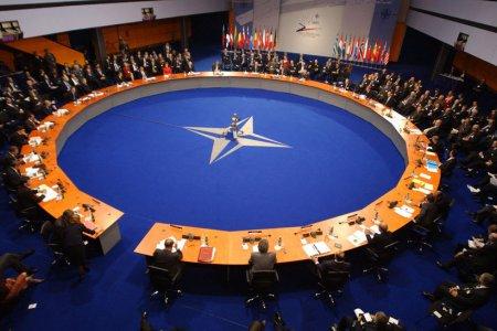 Свободные от военных союзов Швеция и Финляндия и НАТО