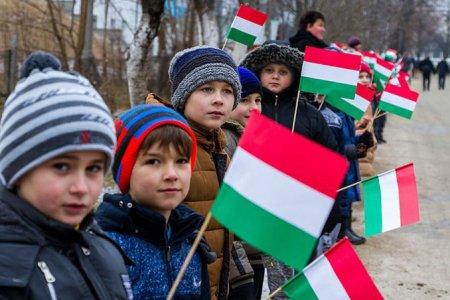 Закарпатье наше: зачем Венгрии автономия в Украине. Взгляд из Киева