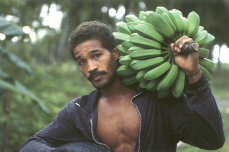 Похвала кубинскому банану