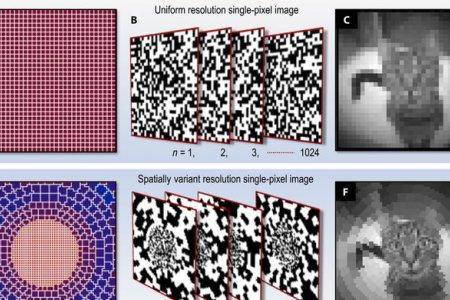 Зрение животных вдохновило ученых на создание нового вида камер