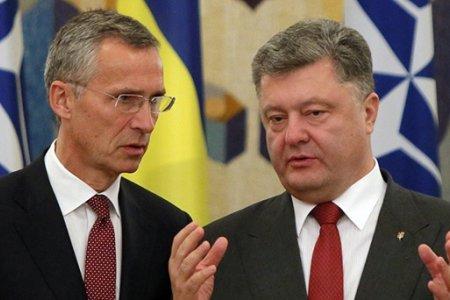Стратегия НАТО на постсоветском пространстве: угрозы для России