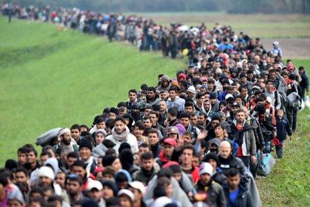 Как интегрировать иммигрантов?