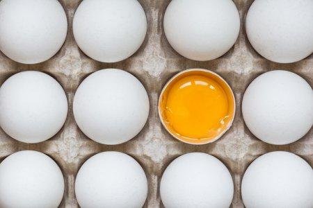 Генетически модифицированные куриные яйца содержат лекарство от рака