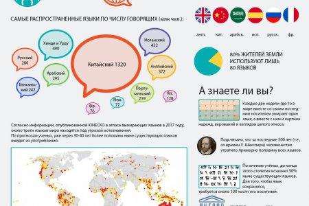 Языковое разнообразие мира