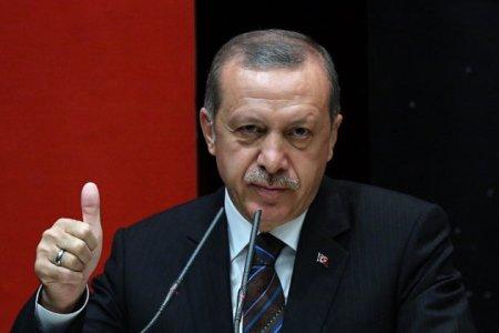 Турция в преддверии досрочных выборов
