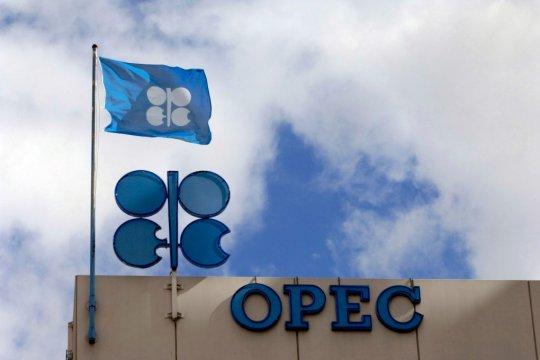 Борьба США и ОПЕК за влияние и цены на мировом рынке нефти