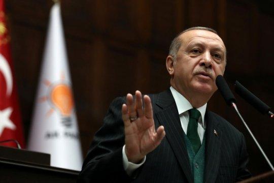 Турция: между экономикой и политикой