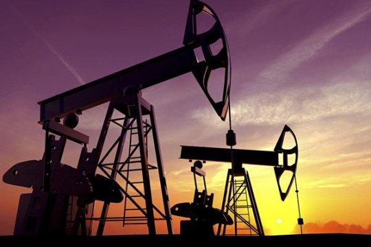 После убийства саудовского журналиста «нефть пошла вниз»