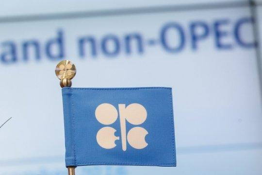 ОПЕК: нефтяное перепутье