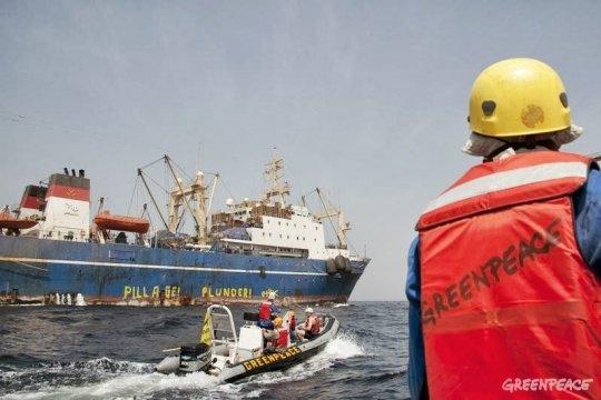 Бывший шеф «Greenpeace»: «Это – полный обман и афера»