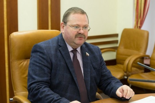 О. Мельниченко: Совфед хочет создать группу дружбы с парламентом КНДР