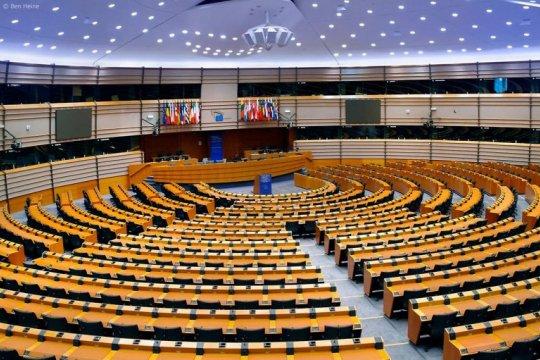 Выборы в Европарламент - час истины?