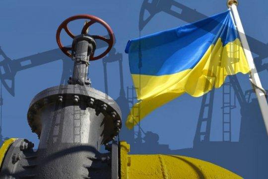 Украина: газовая независимость или политика против экономики