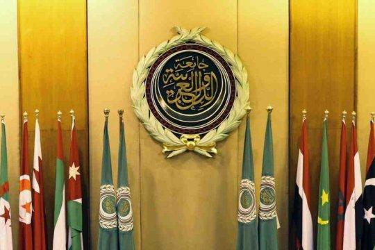 Саммит ЛАГ: «иранский рикошет» Турции