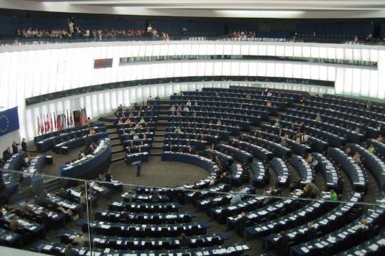Выборы в Европейский парламент: непростая шахматная партия
