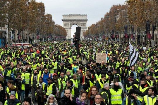 Шоковая статистика «желтых жилетов» во Франции