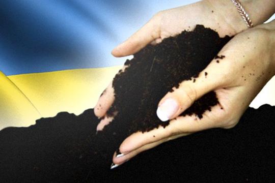 Магнаты вернутся на Украину?
