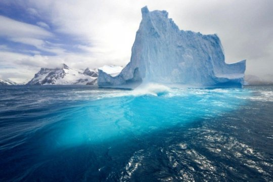 Battle for the Arctic: friends and foes