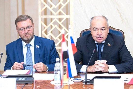 Российские сенаторы провели переговоры с членами Палаты представителей Египта