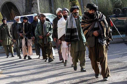 Талибан пригрозил США новыми потерями из-за приостановки мирных переговоров