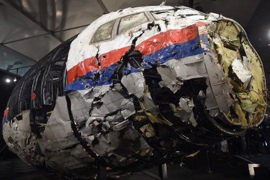 Депутаты парламента Нидерландов потребовали изучить роль Украины в гибели MH17