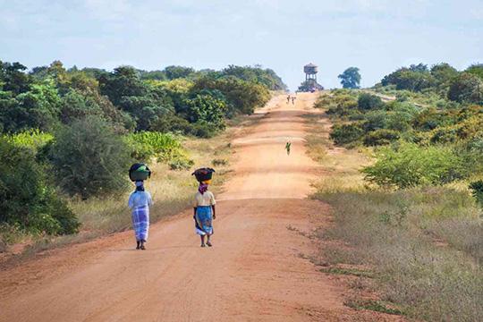 Африка - как поле мировой конкуренции