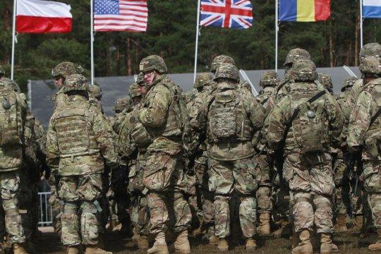 Немецкий парламентарий назвал США и Турцию «могильщиками» НАТО