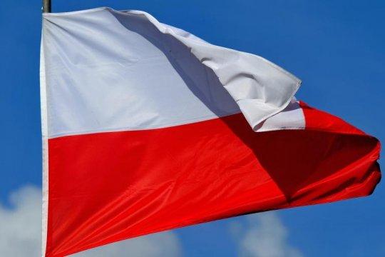 Польская диаспора за рубежом – как фактор внутриполитической борьбы