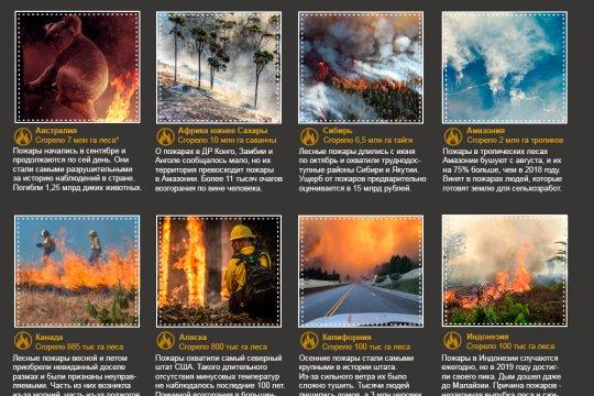 Крупнейшие природные пожары-2019