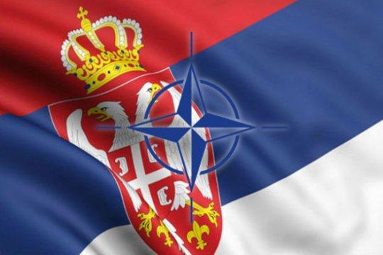 Сербы не хотят в НАТО