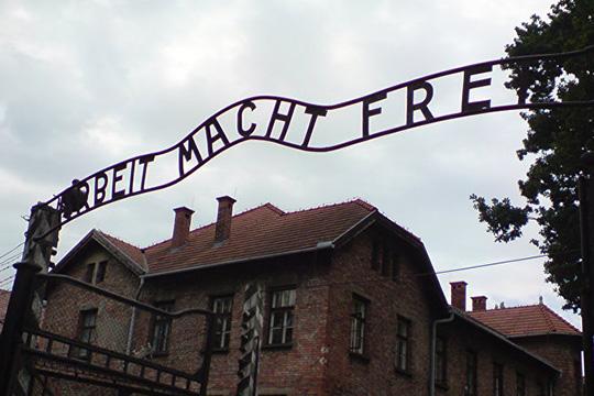 Хайко Маас: одна из основных задач внешней политики ФРГ – не допустить повторения Освенцима