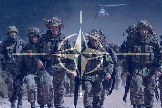 Генерал армии США: Учения
