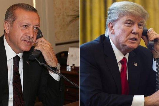 Трамп в разговоре с Эрдоганом осудил поддержку Россией сирийских властей