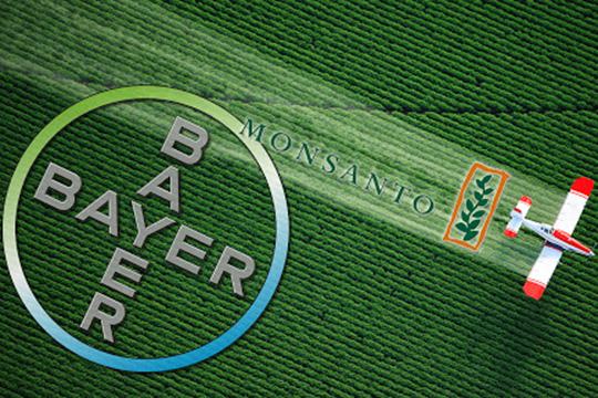 Распространителя ГМО поймали за руку. «Monsanto» опять проиграло в американском суде