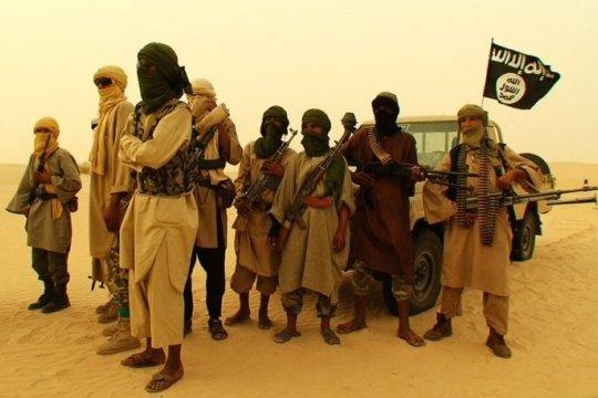 Африка: джихад крепчает выше Экватора
