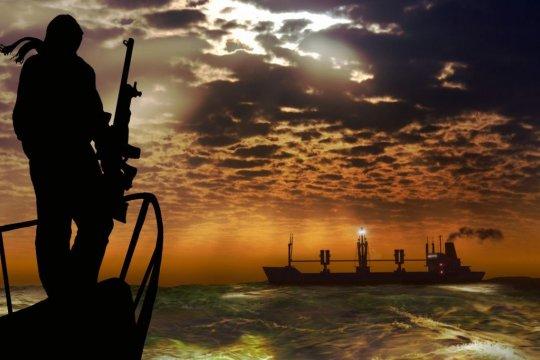 В МИД России сообщили об освобождении захваченных пиратами моряков