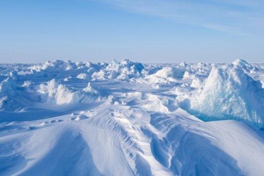 Какие способы управления морскими ресурсами в Арктике нас могут ожидать в будущем?