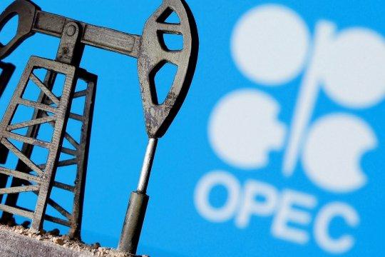 Новая стратегия ОПЕК+: влияние на нефтяной рынок
