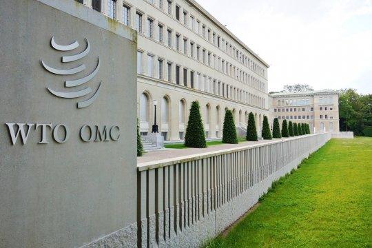 Восемь лет членства России в ВТО: есть ли перспективы?