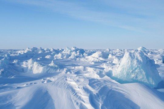 Германия и её интересы в Арктике