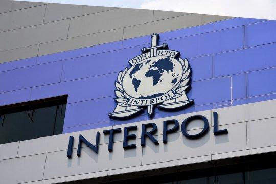 В Интерполе рассказали об увеличении связанных с пандемией COVID-19 кибератак
