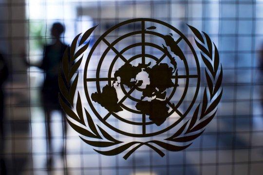 ООН: актуальные проблемы и перспективы их решения